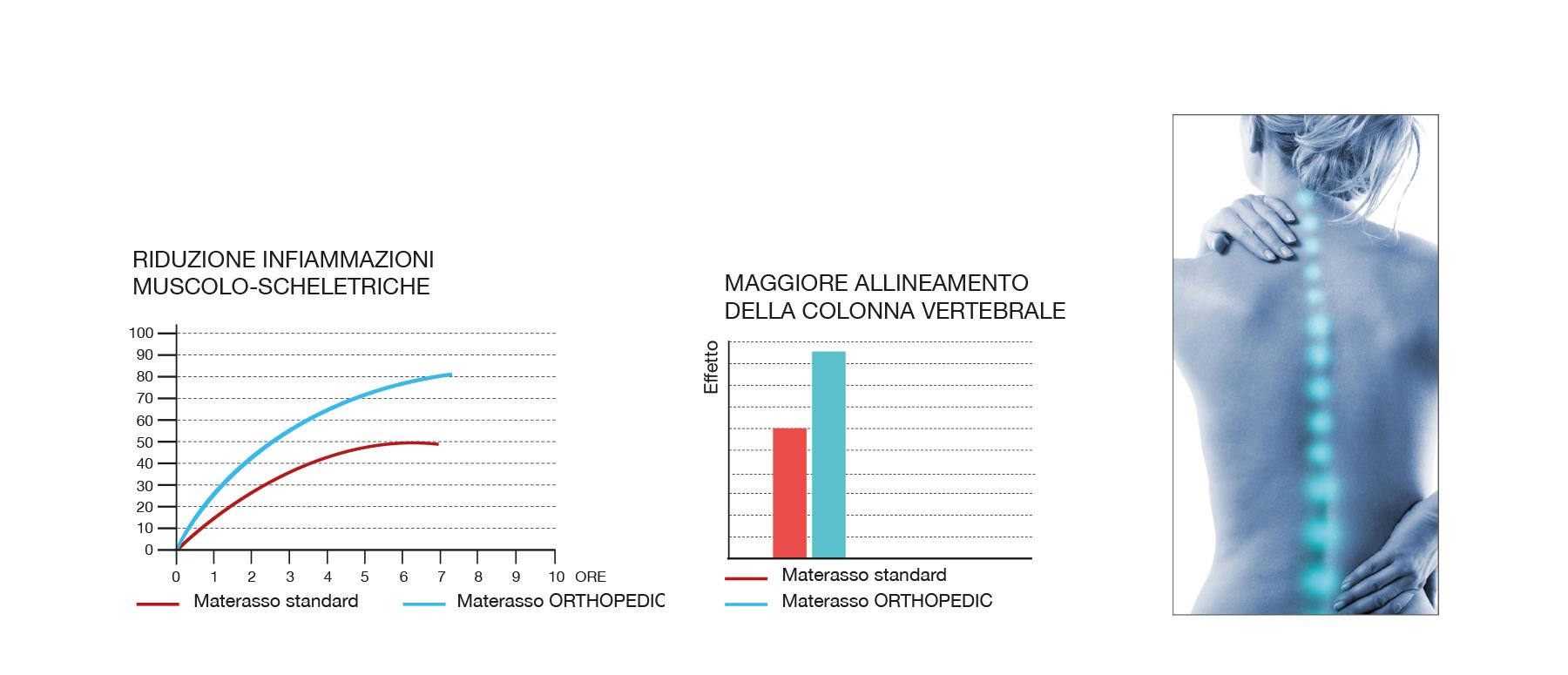 Caratteristiche Orthopedic